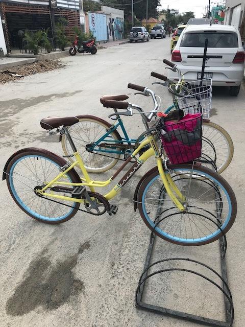 Our cute rental bikes