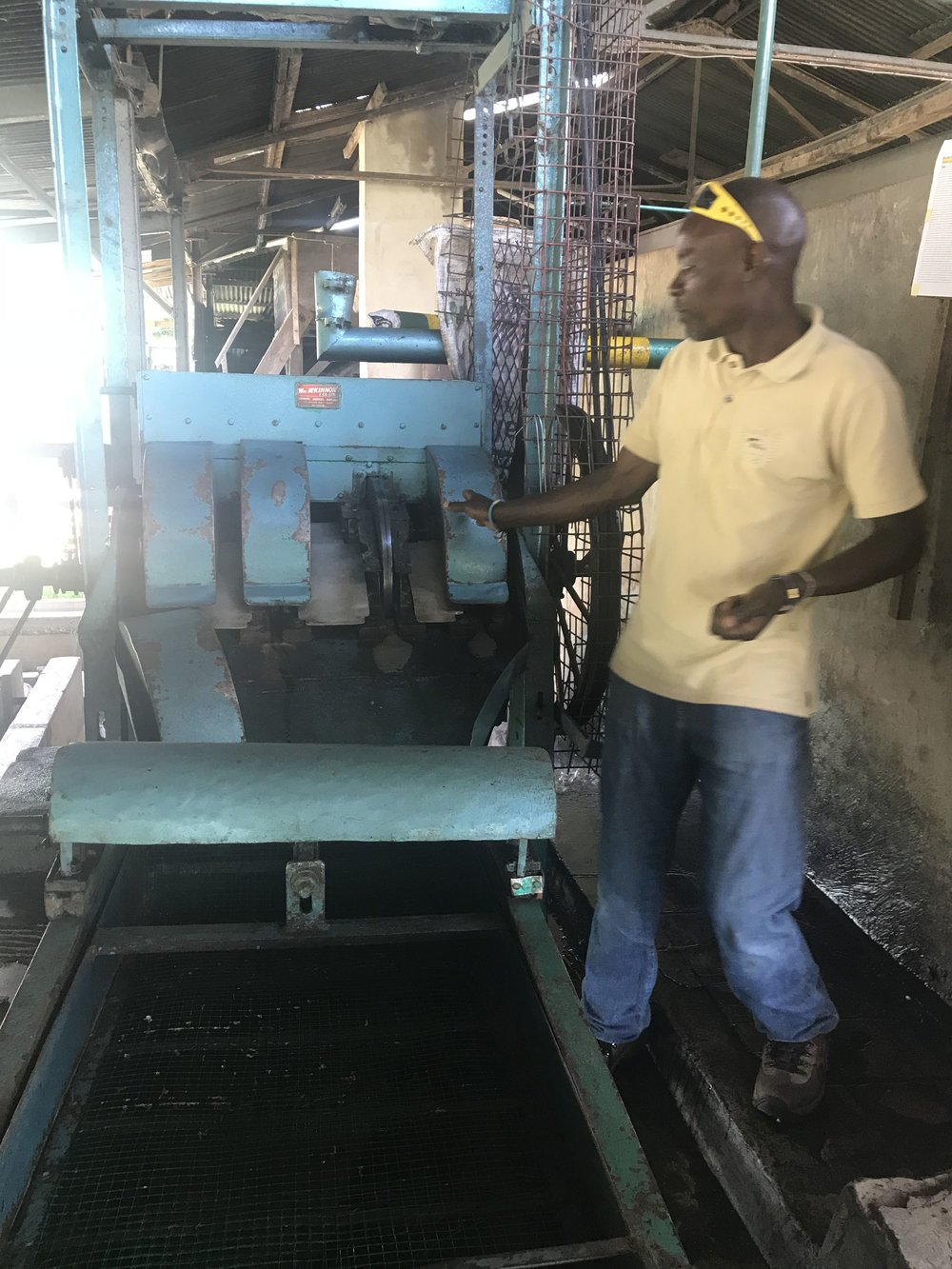 Thaddeus standing next to the machine that separates the beans from the shells and explaining how it works.