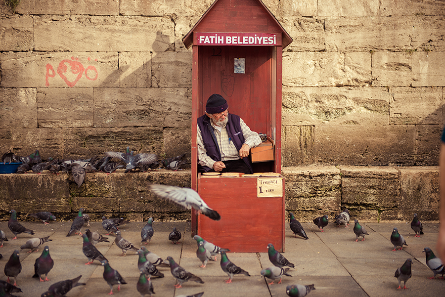 Bird Seed Seller Eminonu