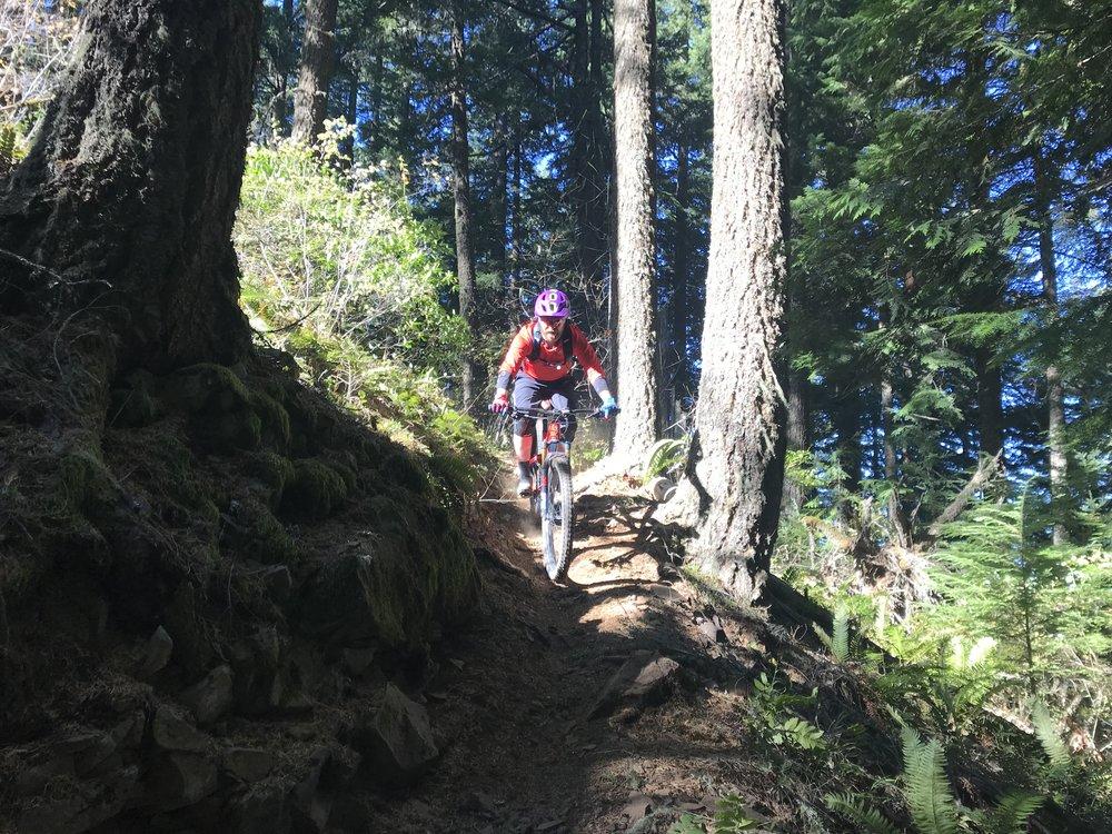 Lawler Trail , Oakridge.