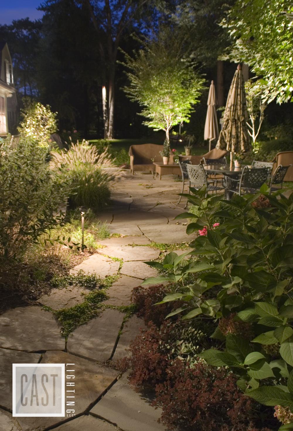 1 backyard.png