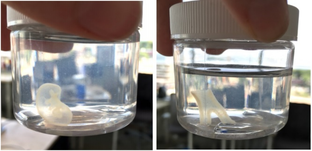 Figure 1: Kidney (left) and bifurcated tube (right) printed using a Allevi 2 and the FRESH method.