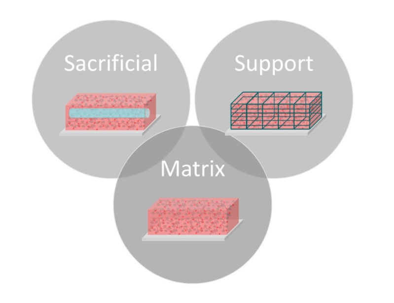 Figure 1: Many different types of bioinks are used to develop viable 3D tissues with complex geometries. The main categories include matrix, sacrificial, and support bioinks.