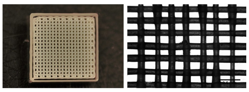 Figure 1: Images of printed lattice structures demonstrate reproducibility and high resolution. Left: image of printed lattice structure. Right: Brightfield image of printed lattice at 4x magnification (scale bar 0.5 mm).