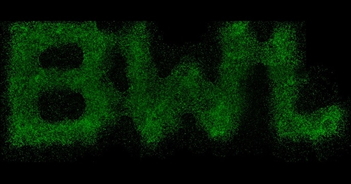 """BWL"" Design printed with gelatin-based cell-laden ink."