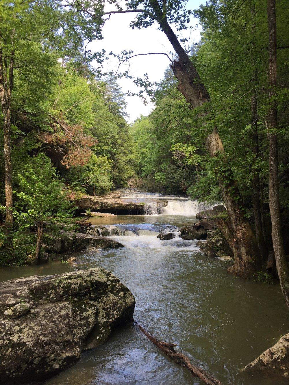 Bark Camp Creek Cascades