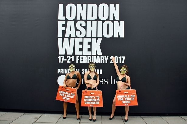 Lingerie clad models kick off Peta protest at London Fashion week against the use of exotic animal skins