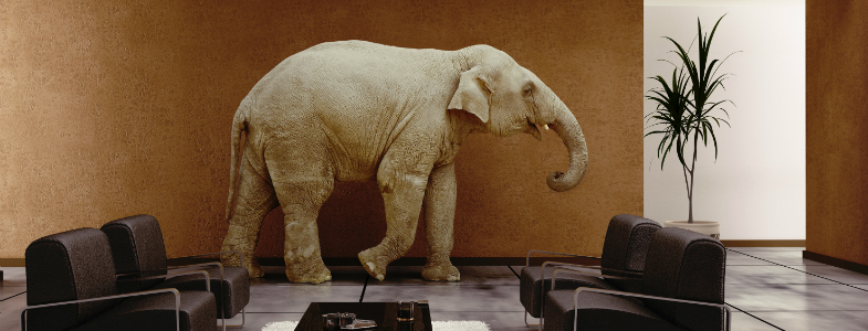 elephant-in-room.jpg