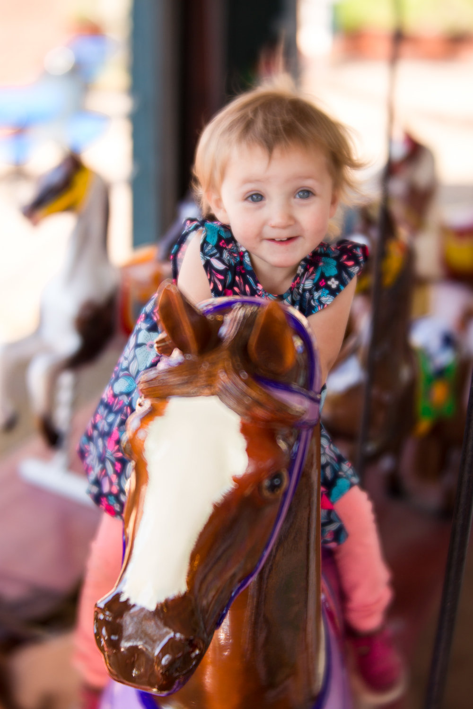 Kalamazoo-Photographer-Amanda-Schwab-Photography-Carousel2