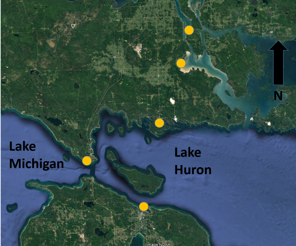 Aquatic connectivity channel project locations.