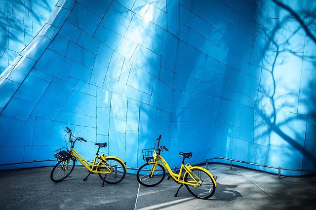 Colors & Shadows #colorful #shadows #architecture #design #trees #streetphotography #sidewalk #stilllife #quite #color #colors #seattle #seattlecenter #urban #city #bike #yellow #blue #light