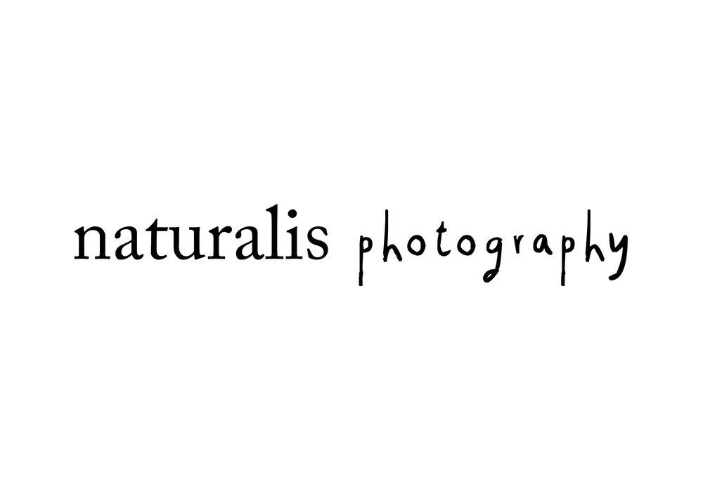 logo_naturalis.jpg
