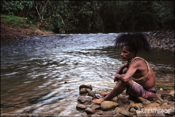 Customary landowner, Auwagi Sekapiya, of the Ubei Clan; Kosuo tribe in Papua New Guinea, 2003.