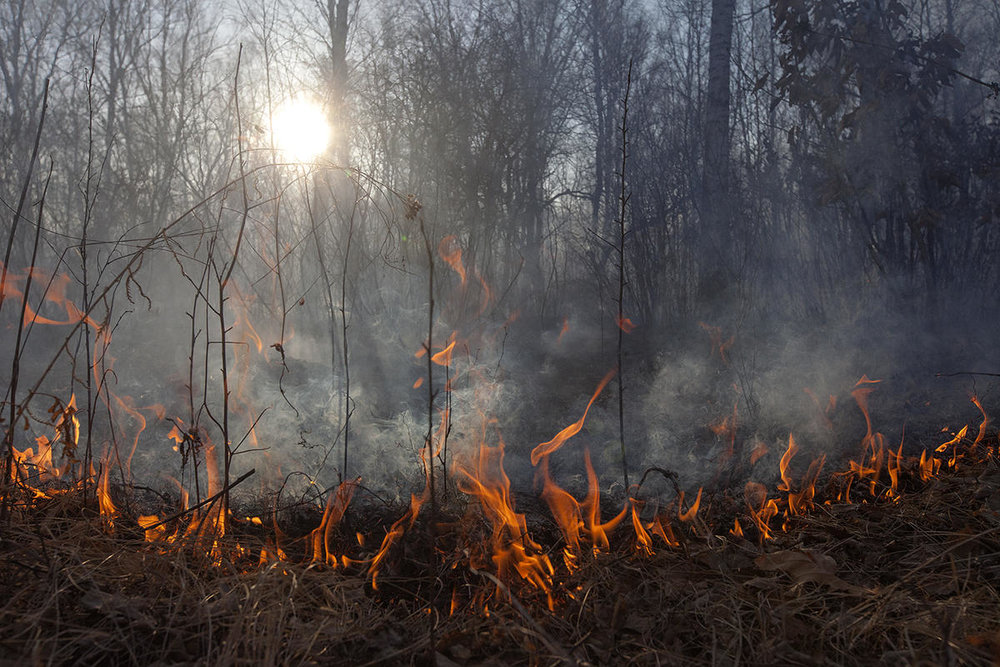 Wild fires in Amur region, Russia. This year the area affected by fire, including all categories of land in the region, is 1.69 million hectares. © Maria Vasilieva / Greenpeace