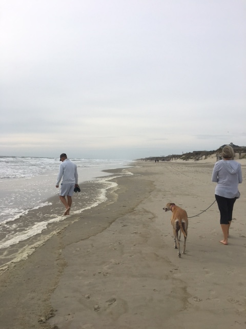 My Mom and Dad walking Kassie on the beach