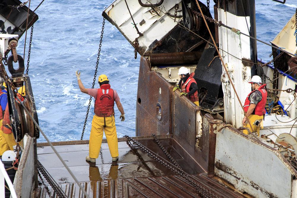 Otakou crew in action