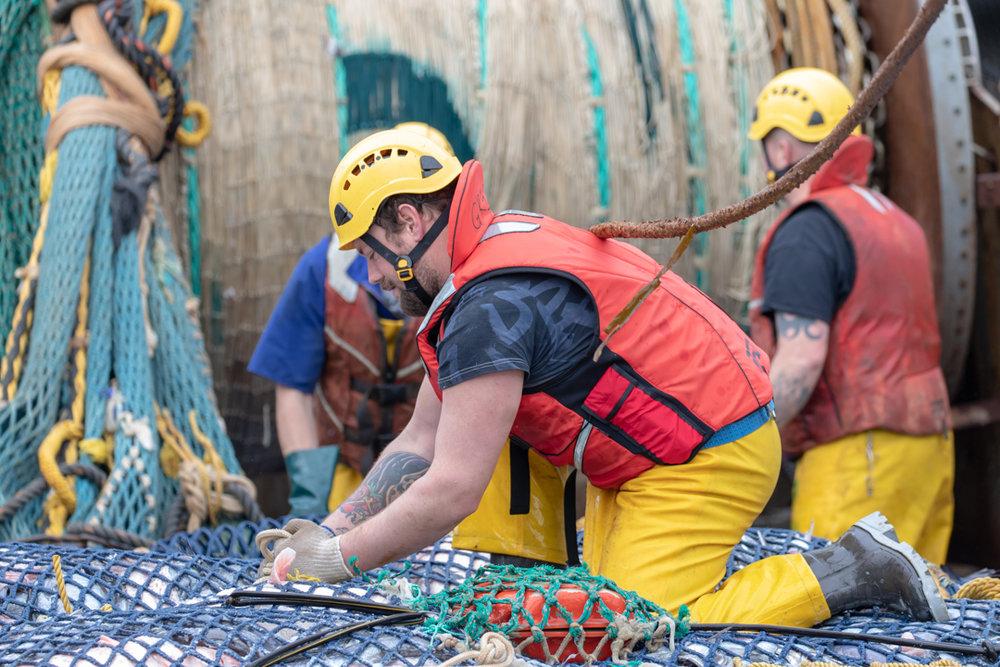 Tamzin Henderson - Otakou Sealord Cook Strait 2018 - Working.jpg