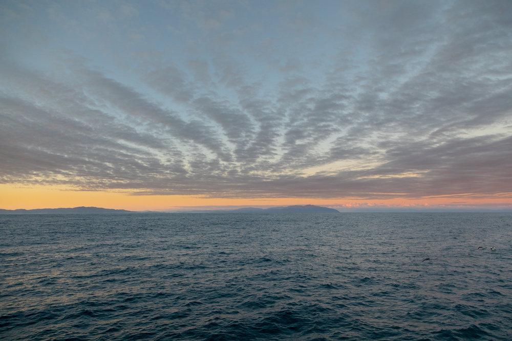 Tamzin Henderson - Otakou Sealord Cook Strait 2018 Sunset.jpg