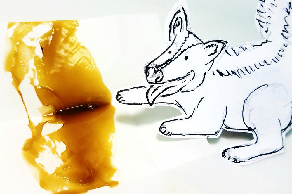 Skunk Dawg extract from Hood Oil