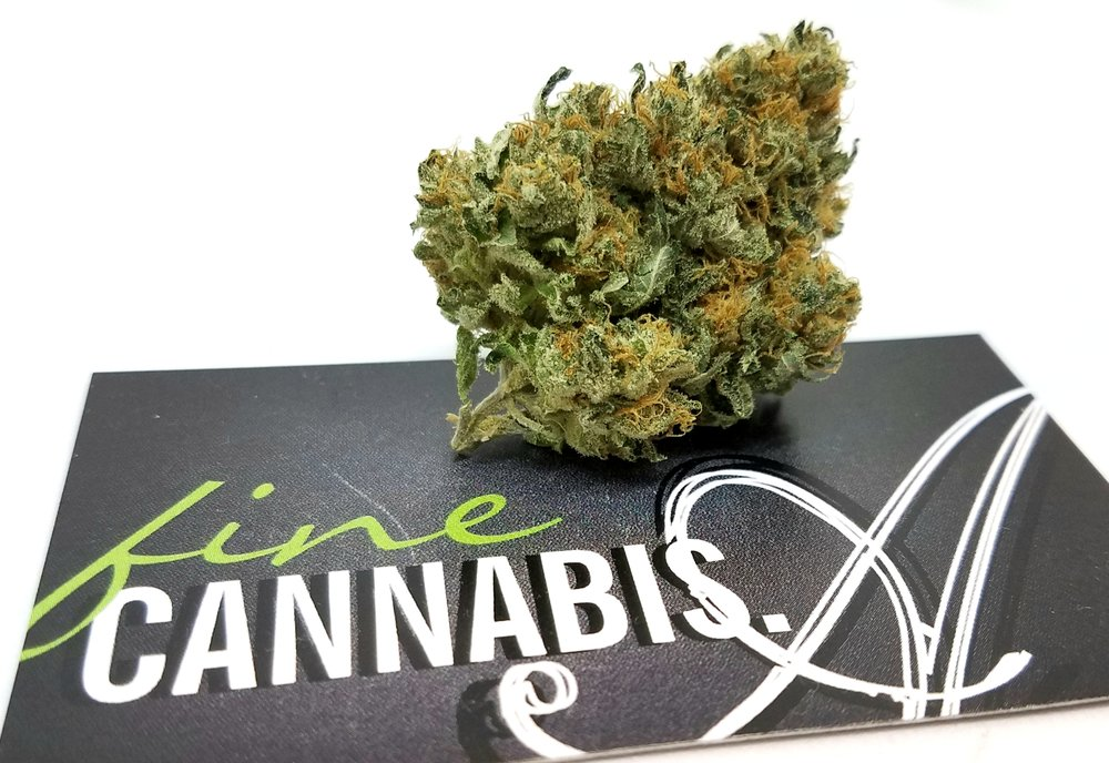 Hell's Fire OG grown by Renegade Roots