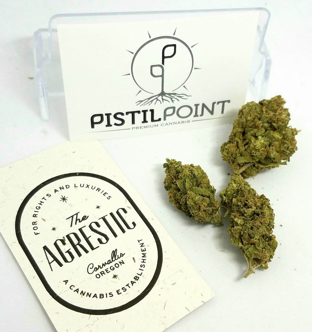 Super Jack grown by Pistil Point