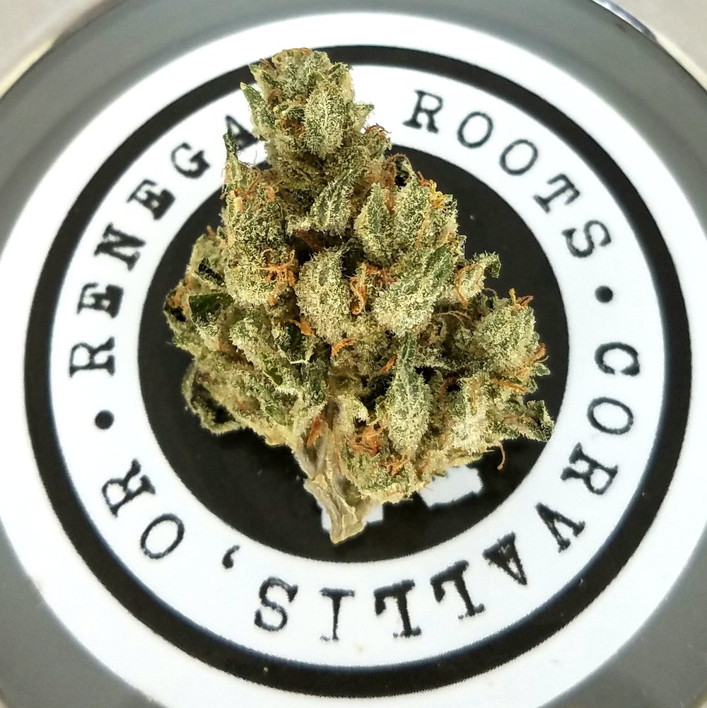 McGrupp grown by Renegade Roots