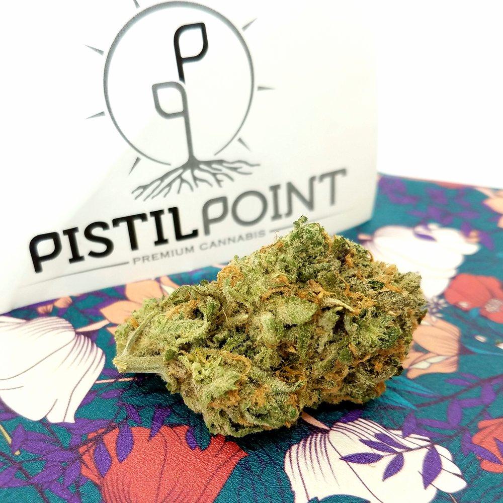 Double Dream grown by Pistil Point