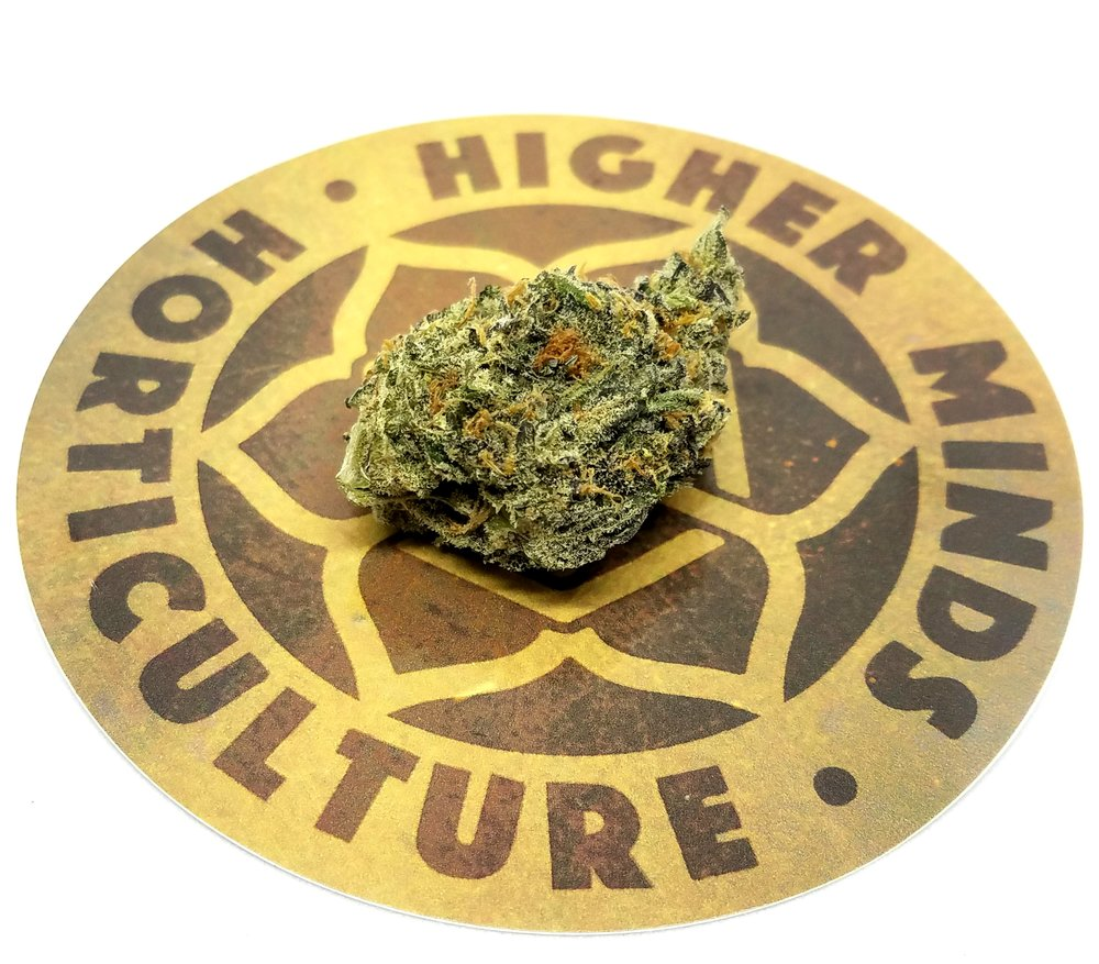Mendo Breath grown by Higher Minds Horticulture