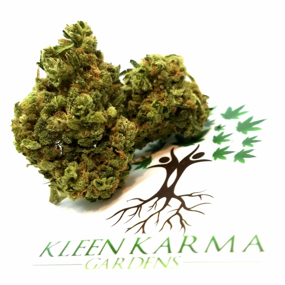 Nana's Fix grown by Kleen Karma Gardens