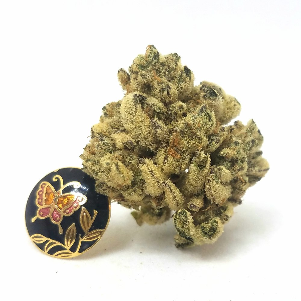Animal Mints grown by Higher Minds Horticulture
