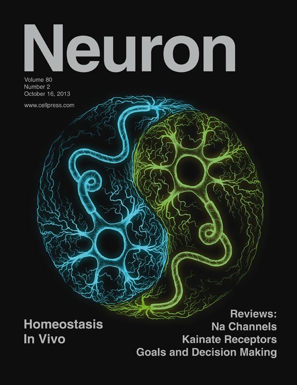 Neuron2013