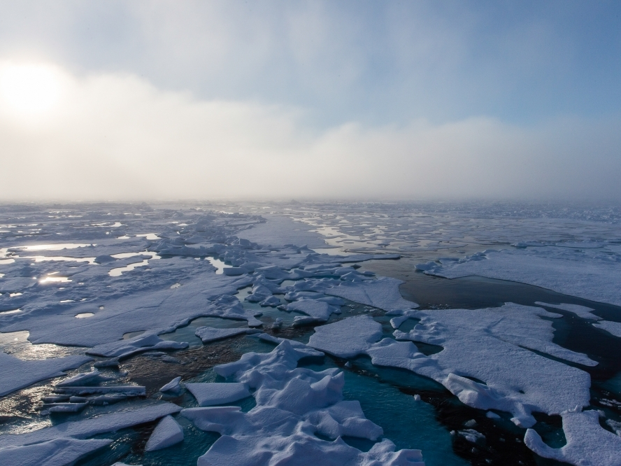 The Beaufort Sea marginal ice zone in summer, 2014.