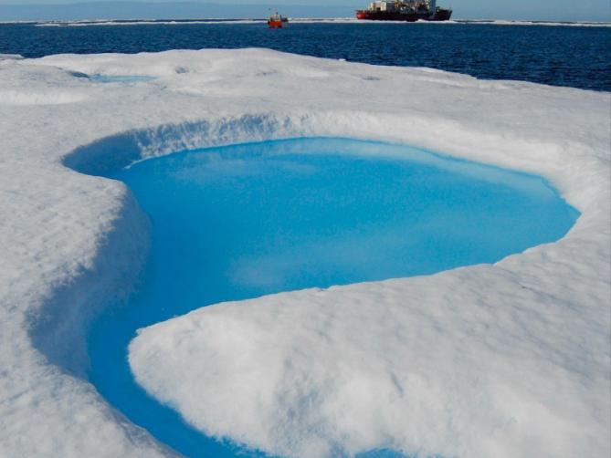 Arctic 3