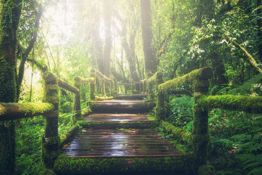 Podcasts tHAT help us to create bridges into who we truly are. - The bridges that carry us from our daily life into the vastness of who we are, are our keys to knowing how to maintain balance in our life.