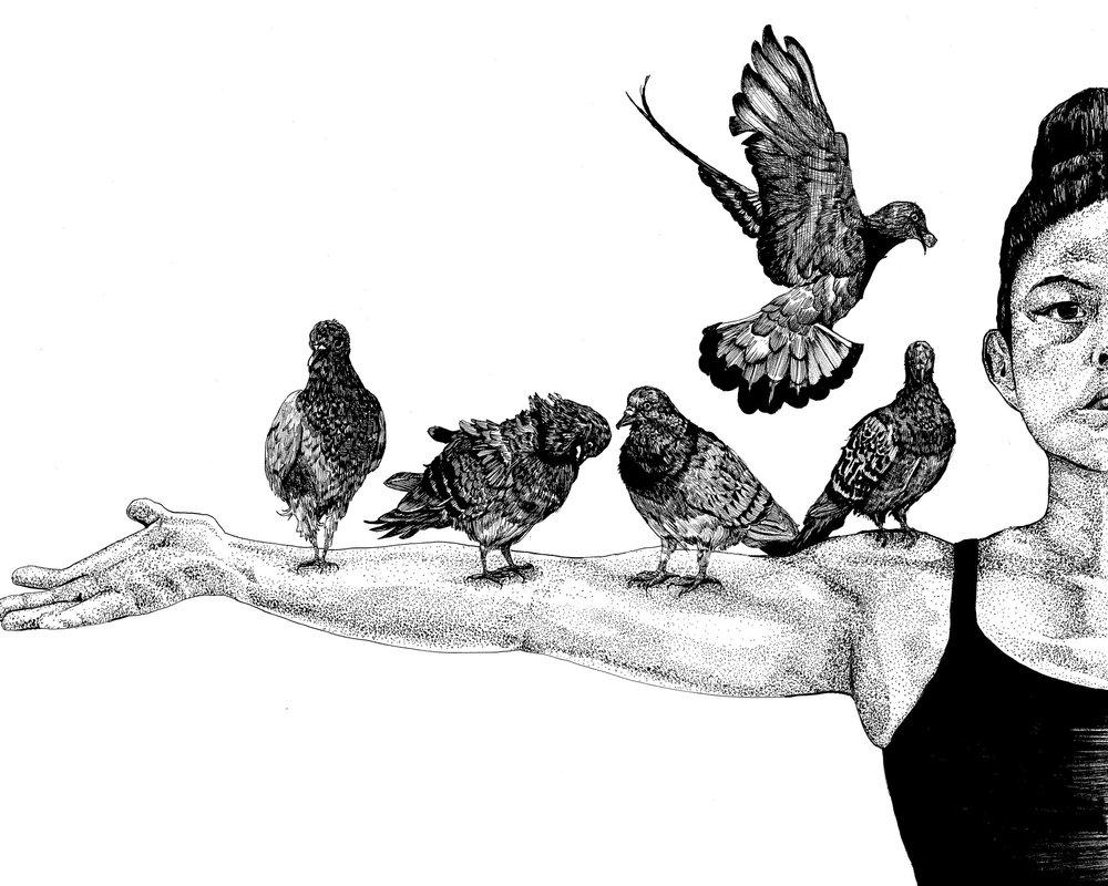 Pigeon Right.jpg