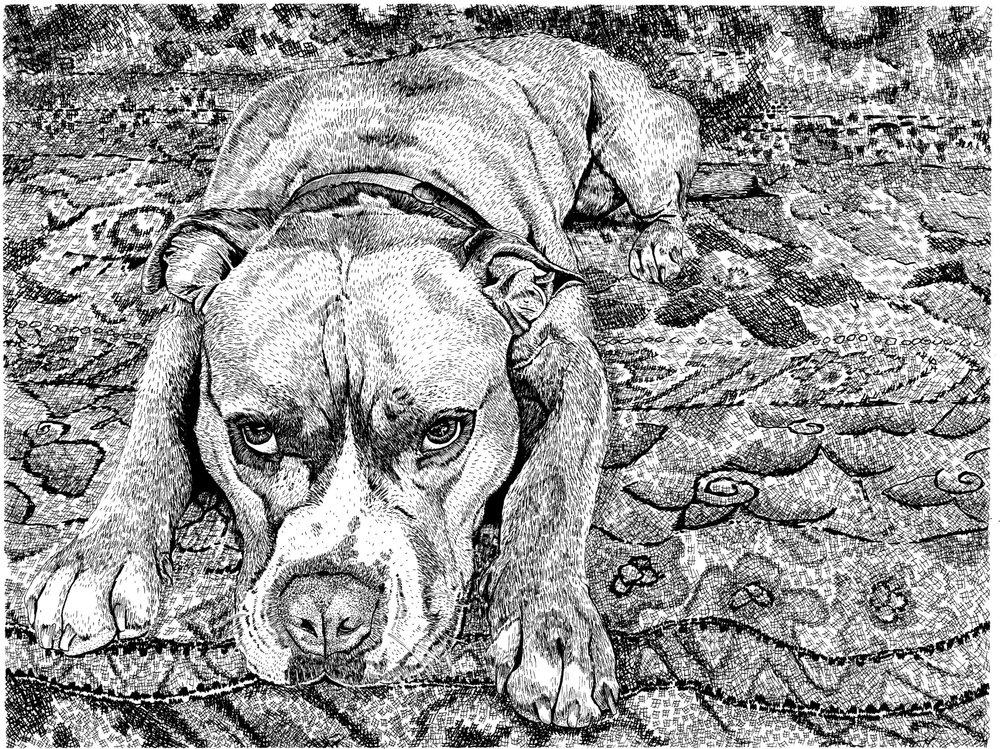 Sexy Dog on Carpet