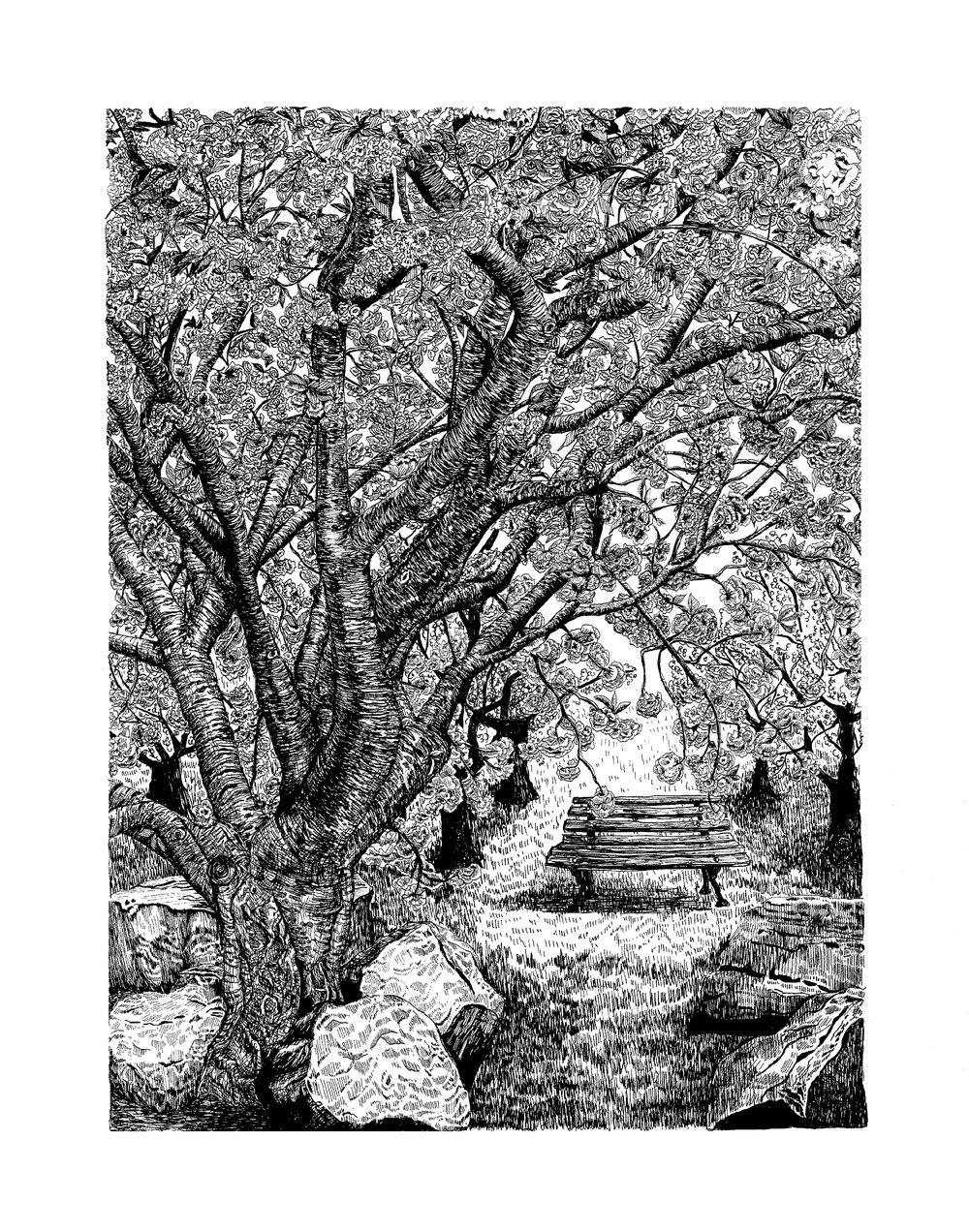 Cherry Blossom Tree + Bench small.jpg