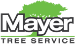 mayer-tree-company-logo.png
