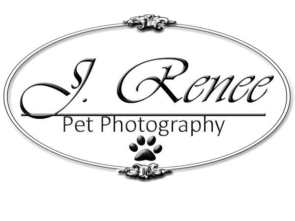 J. Renee Pet Photography