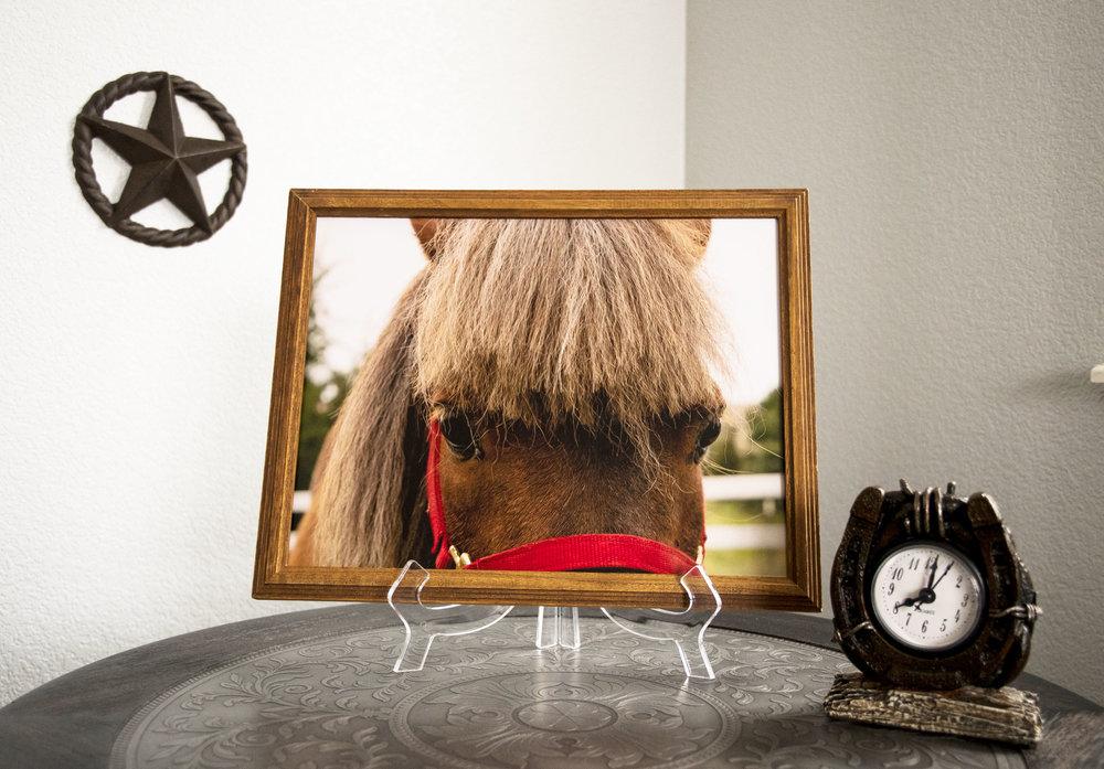 Pony Framed