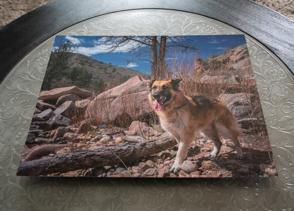 Metal - Metal Prints are waterproof, UV resistant, and made from 100% recyclable aluminum. Metal prints produce vibrant colors with a glossy finish.