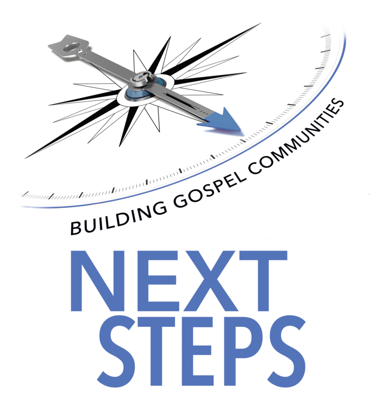 Next+Steps+logo.png