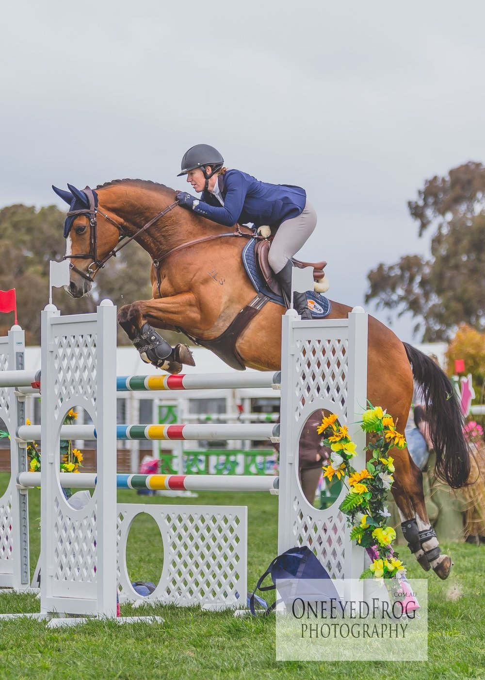Tallara Cameron - World Cup Show Jumper4 Star Eventer