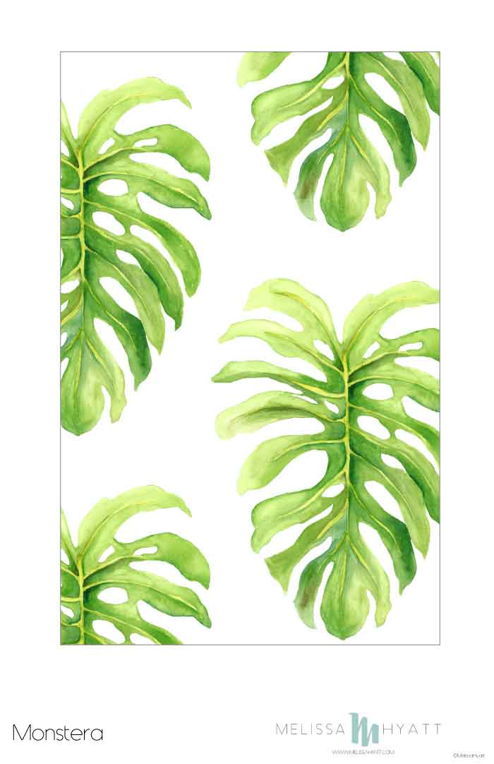 MELISSAHYATT_Monstera.jpg