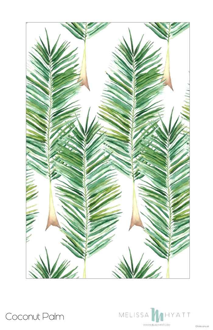 MELISSAHYATT_Coconut-Palm.jpg