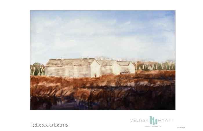 MELISSAHYATT_tobacco-barns.jpg