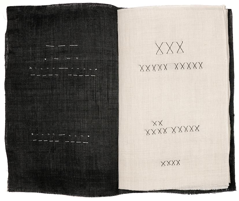 Novel X