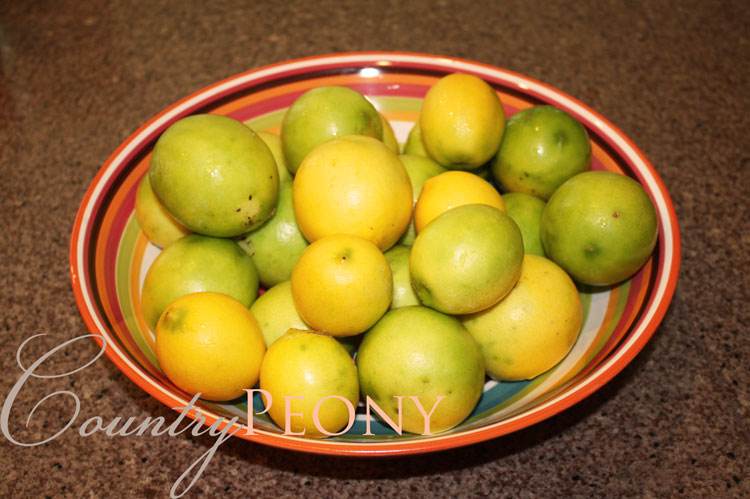 Homegrown Limes