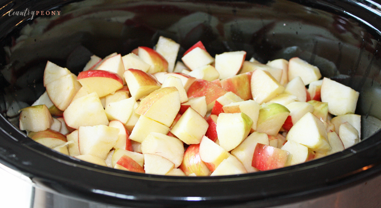 The Easiest Homemade Applesauce Ever