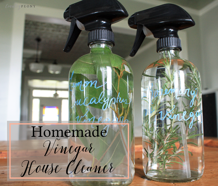 Homemade Vinegar House Cleaner